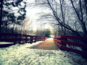 20 Places to Walk in Saskatoon